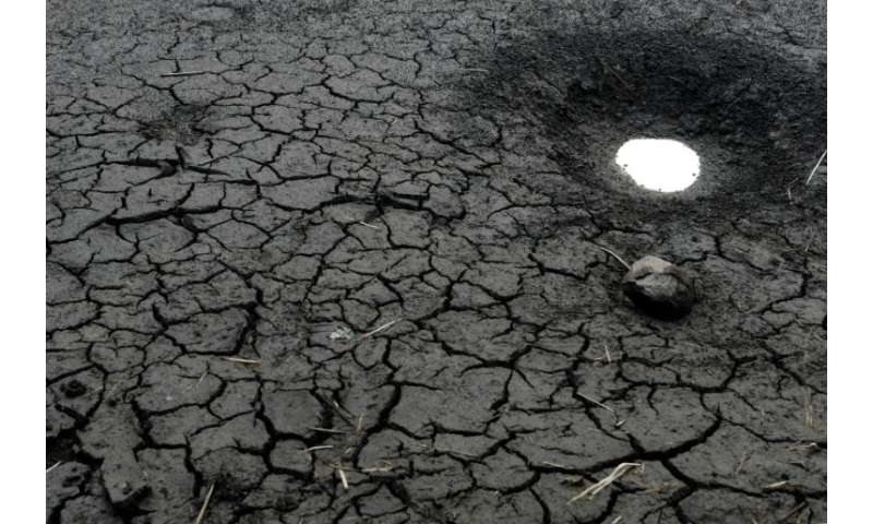 A world that heats up by 2C (3.6 degrees Fahrenheit) could see mass displacement due to shortages of food and fresh water and th