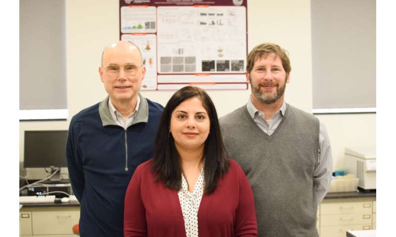 Bacteria-based drug delivery system that outperforms conventional methods
