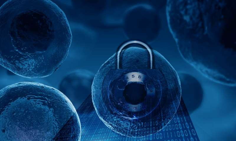 Better security achieved with randomly generating biological encryption keys