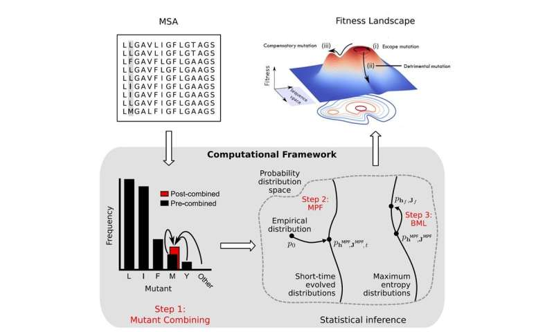 Big data methods learn the fitness landscape of the HIV Envelope protein