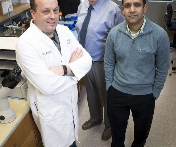 Blood stored longer may be less safe for patients with massive blood loss and shock