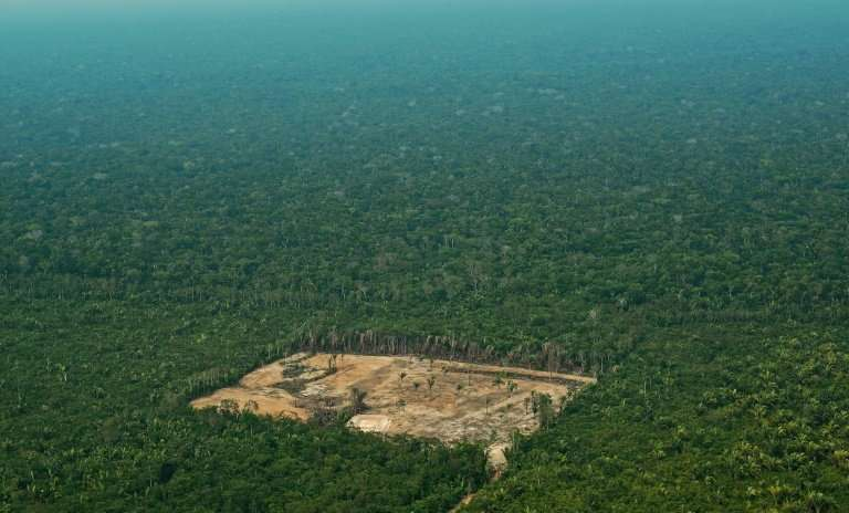 Brazil says 6,624 square kilometers (2,557 square miles) of Amazon rainforest was destroyed in 2017