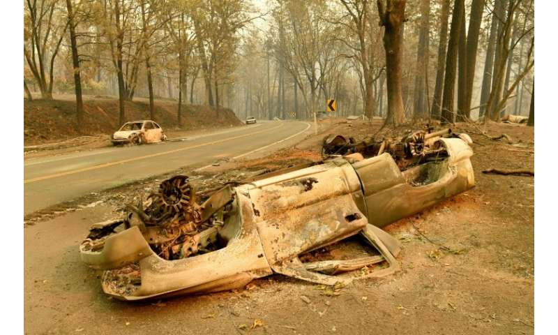 Burned cars litter a road in Paradise, California—most of the town looks like this, but Brad Weldon was lucky
