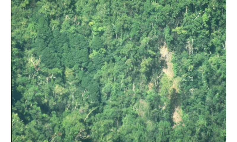 Call for action to tackle threat to a global biodiversity hotspot