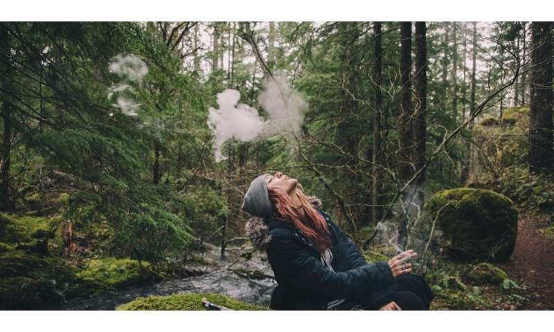 Cannabis and psychosis—what is the link and who is at risk?