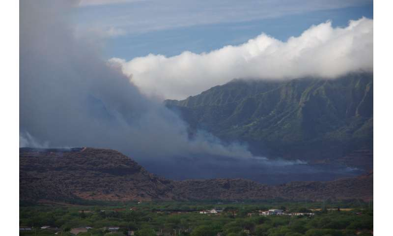 Climate and vegetation shape wildfire risk in Hawai'i