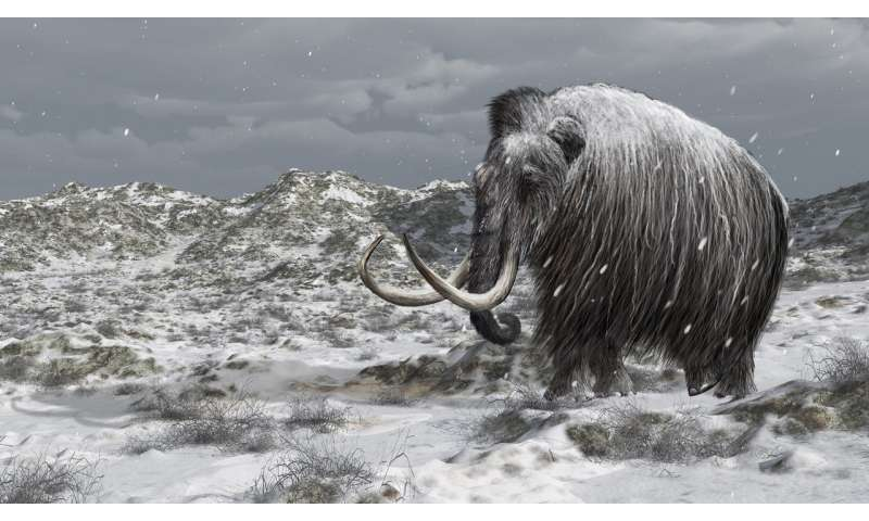 Could resurrecting mammoths help stop Arctic emissions?