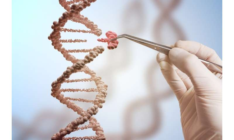 CRISPR/Cas9 gene editing scissors are less accurate than we ...