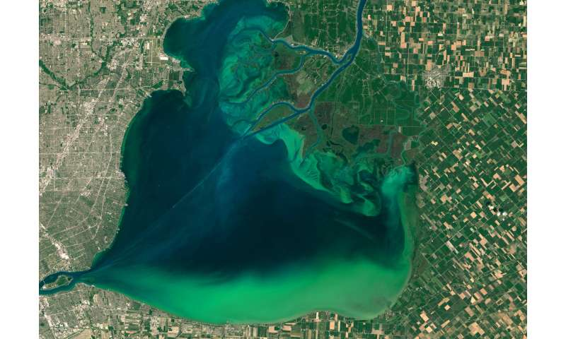 Dead zones are a global water pollution challenge – but with sustained effort they can come back to life