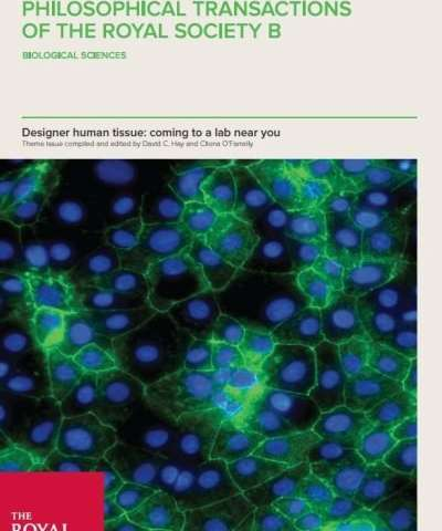 Designer human tissue—coming to a lab near you