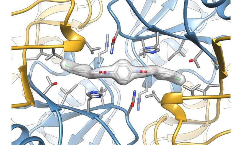 Detailed structure illuminates brain-enhancing drug's action