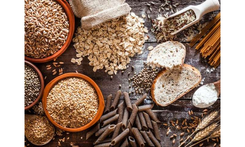 Dietary fiber protects against obesity and metabolic syndrome, study finds