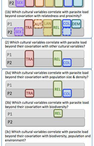 Disentangling the relationships between cultural traits and other variables