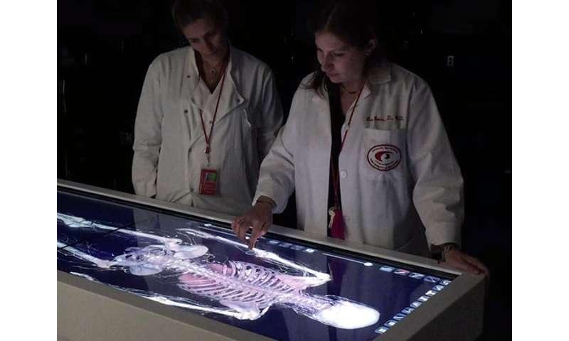 Dissecting digital cadavers
