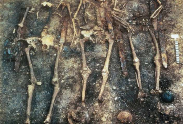 DNA of early medieval Alemannic warriors and their entourage decoded