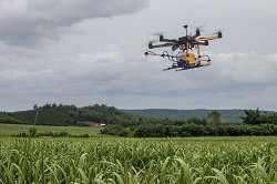 Domain: Agriculture and Forestry, Information and communication technologyNew robots set to transform farming