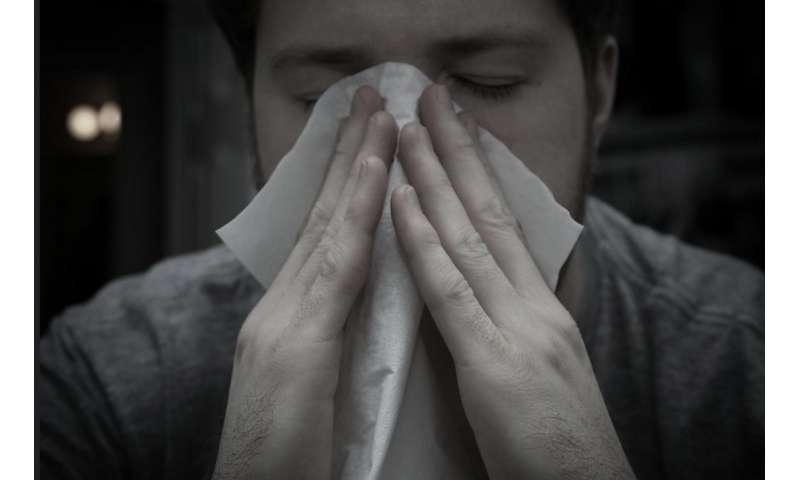 Domestic travel key to distribution of flu across Australia