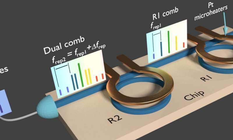 Dual frequency comb generated on a single chip using a single laser