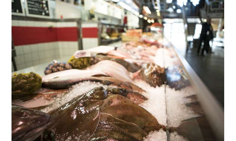 Eating more fish could prevent Parkinson's disease