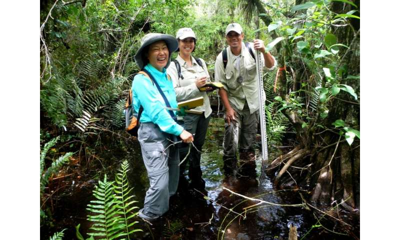 Ecologist suggests wild approach to selling threatened plants