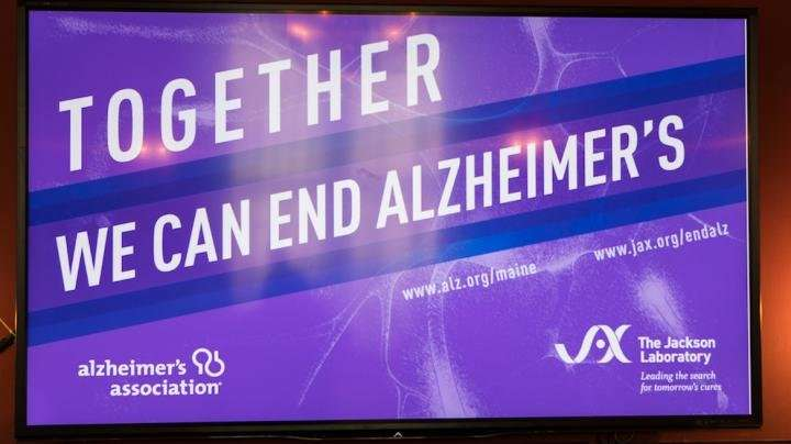 Eight new mouse models for Alzheimer's disease available to researchers
