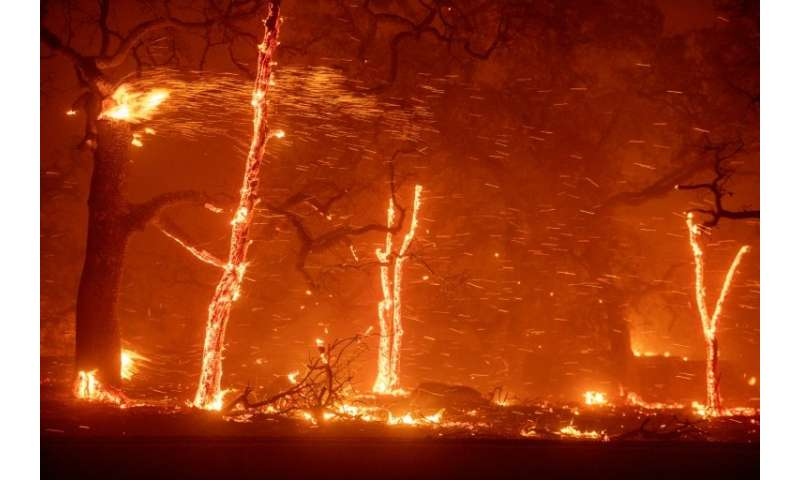 Embers fly as wind and flames from the Camp fire tear through Paradise, California on November 8, 2018.