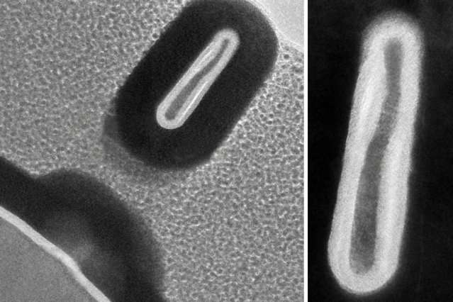 Engineers produce smallest 3-D transistor yet