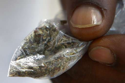 Fake pot likely tainted with rat poison kills 3, sickens 100