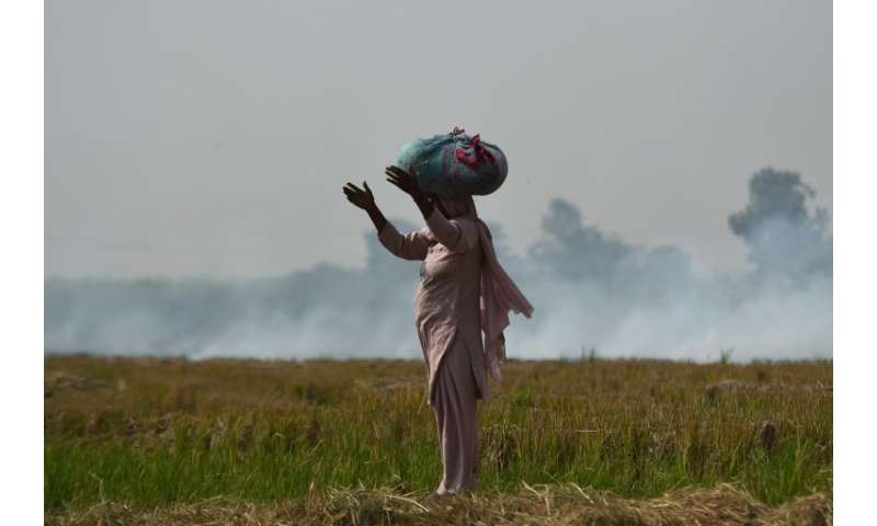 Farmers rushing to ready their fields for next season's wheat crop use fire to quickly and cheaply clear their land