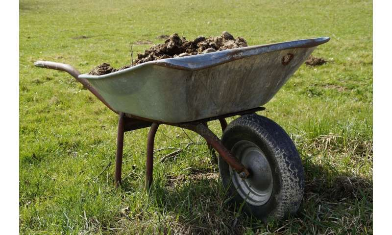 Manure could heat your home