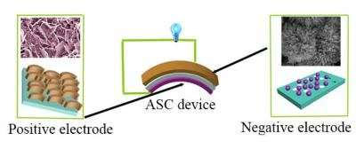 FeCo-selenide -- Next-generation material in energy storage devices?