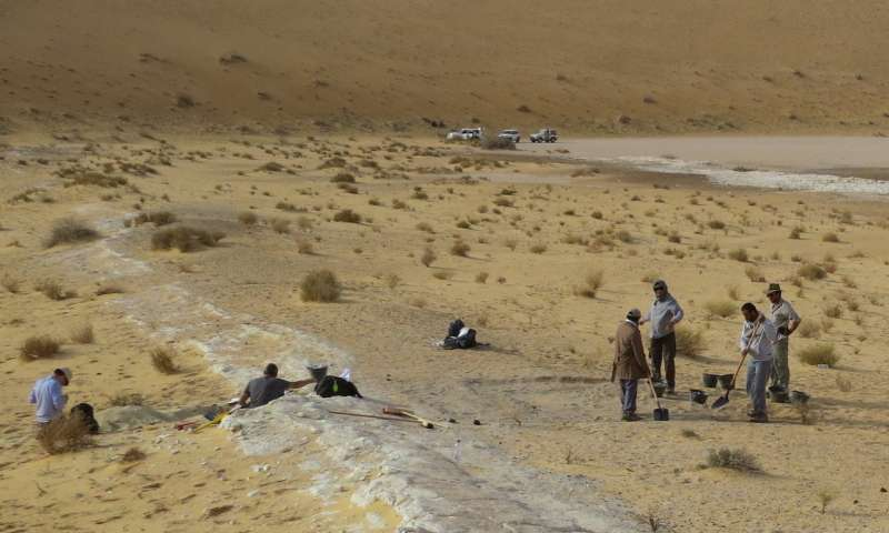 First human migration out of Africa more geographically widespread than previously thought