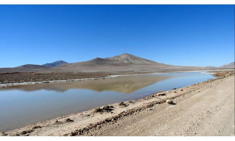 For arid, Mars-like Peruvian desert, rain brings death