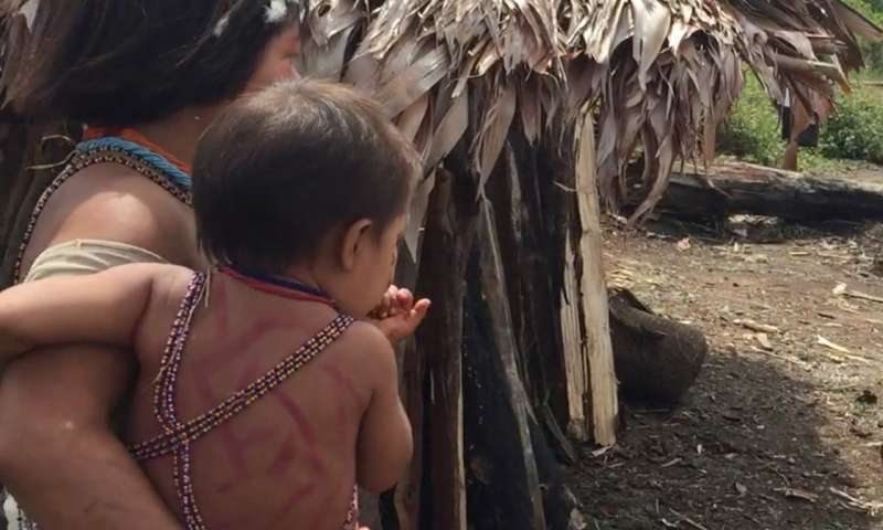 For children, immersion in a rainforest lifestyle can lead to more diverse gut microbes