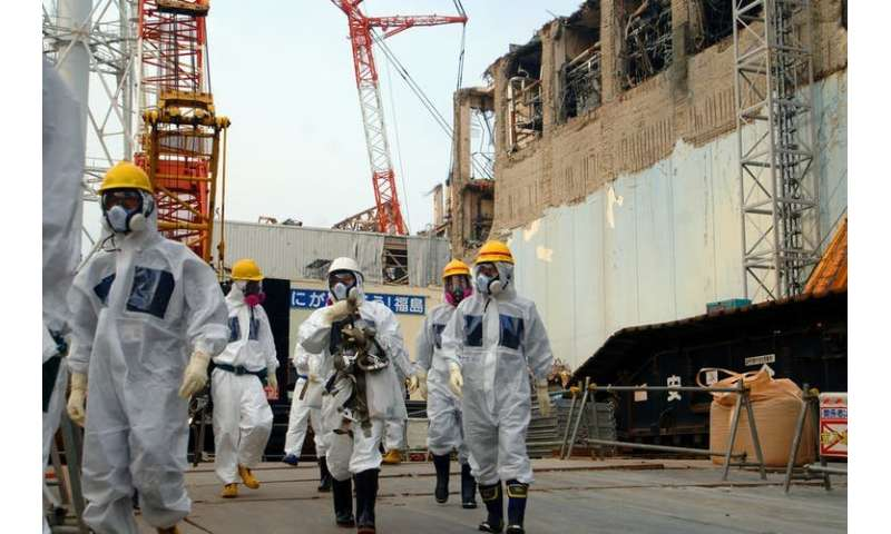 Fukushima seven years later—case closed?