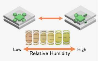 Functional films made of environmentally friendly clay minerals and dyes
