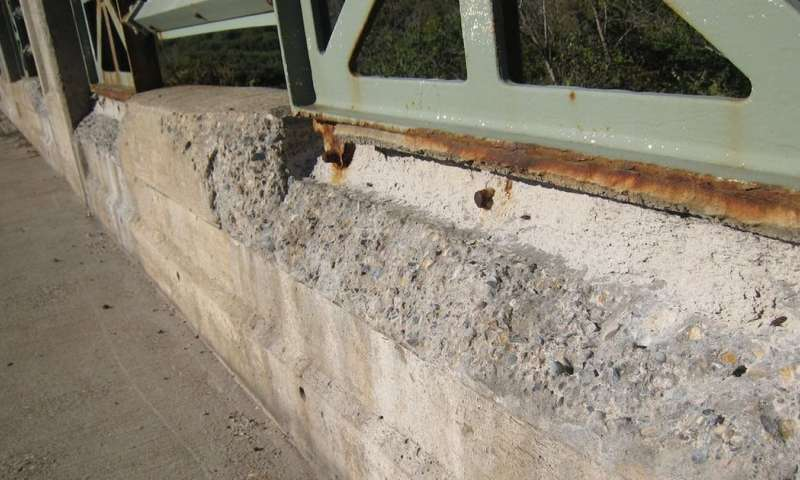 Fungi can help concrete heal its own cracks