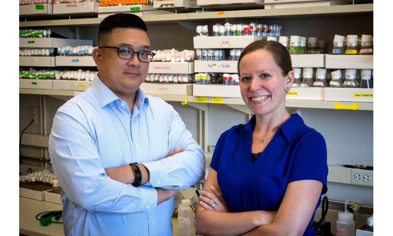 Genetic diversity impacts disease severity