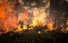 Geoengineering risks losers as well as winners for climate and wildfire risks