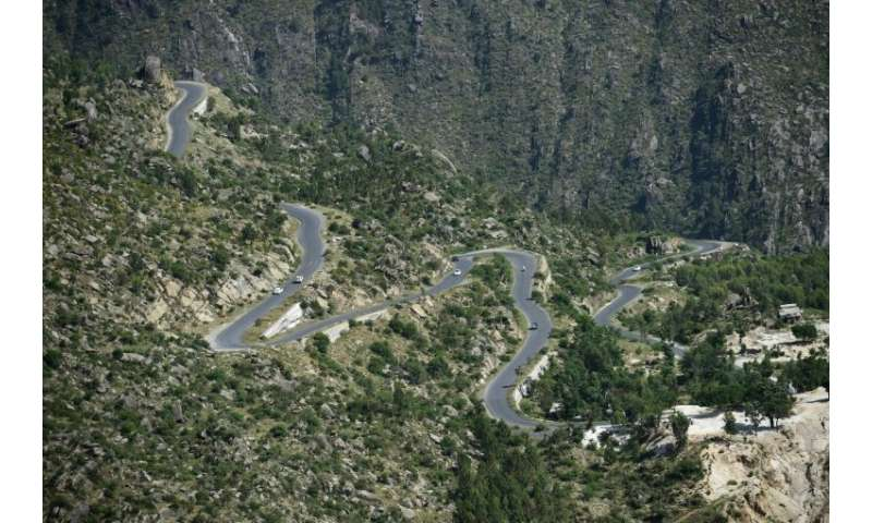 Hairpin bends snake through a tree plantation in Buner in northwest Pakistan