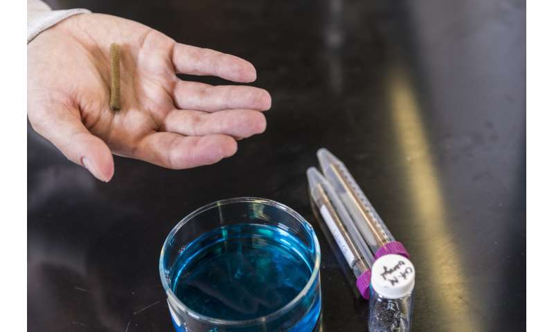 Harmful dyes in lakes, rivers can become colorless with new, sponge-like material