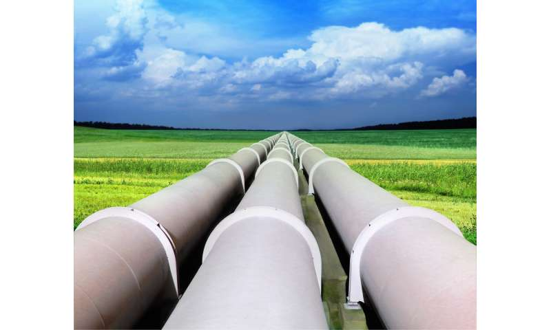 How biomethane can help turn gas into a renewable energy source