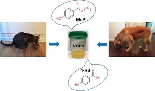 How cats and dogs are consuming and processing parabens