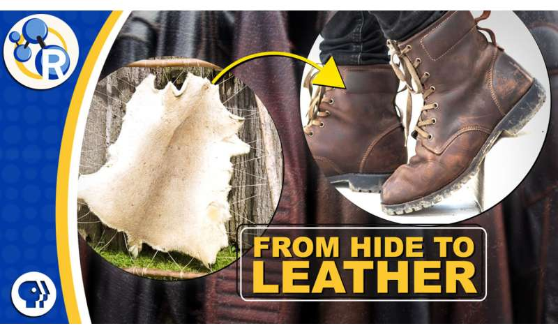 How is leather made? (video)