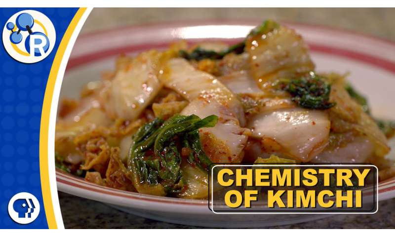 How kimchi gets its kick (video)