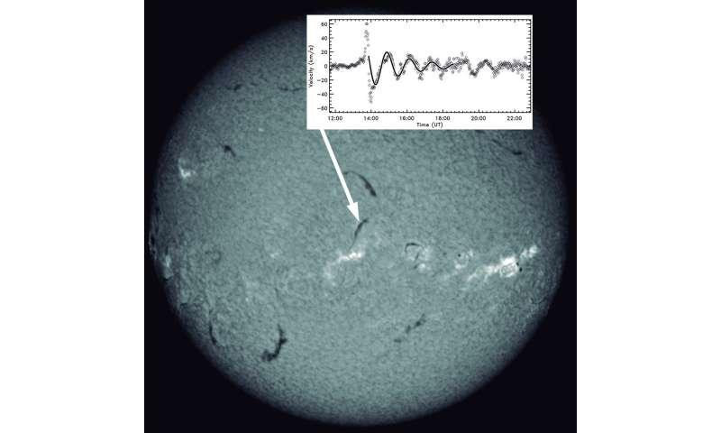 How solar prominences vibrate