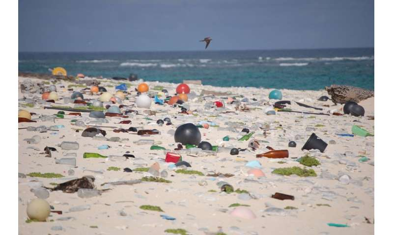 How to clean up our universal plastic tragedy