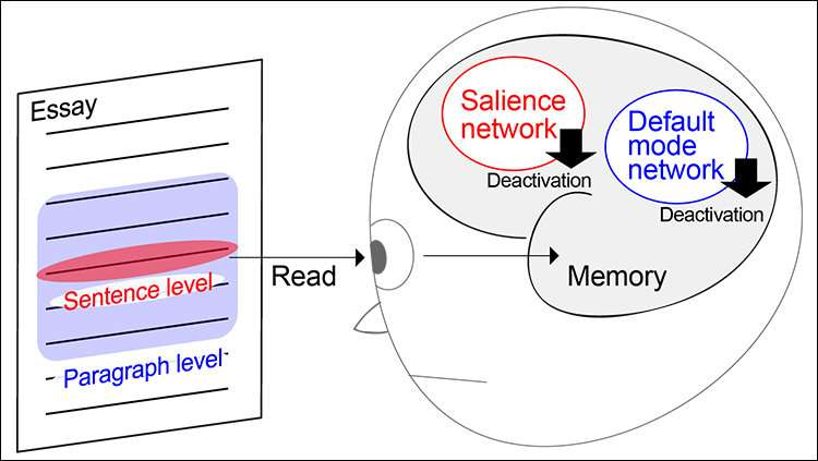 How we remember what we read