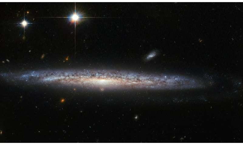 Hubble's curious case of a calcium-rich supernova
