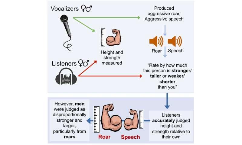 I am human, hear me roar: Judging formidability from human vocalizations